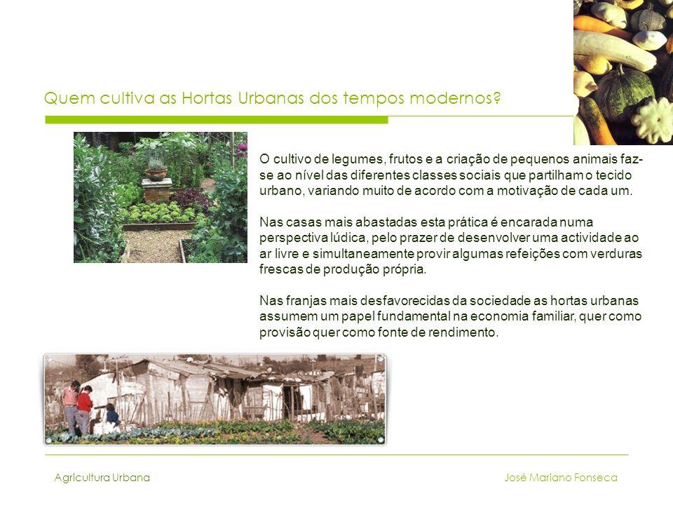 Quem cultiva as Hortas Urbanas dos tempos modernos