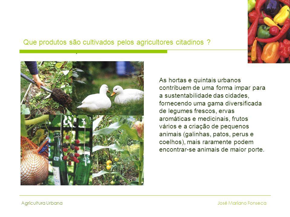 Que produtos são cultivados pelos agricultores citadinos .