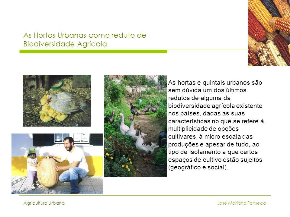 As Hortas Urbanas como reduto de Biodiversidade Agrícola