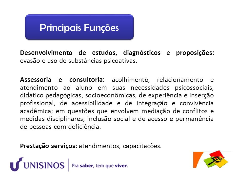 Principais Funções Desenvolvimento de estudos, diagnósticos e proposições: evasão e uso de substâncias psicoativas.