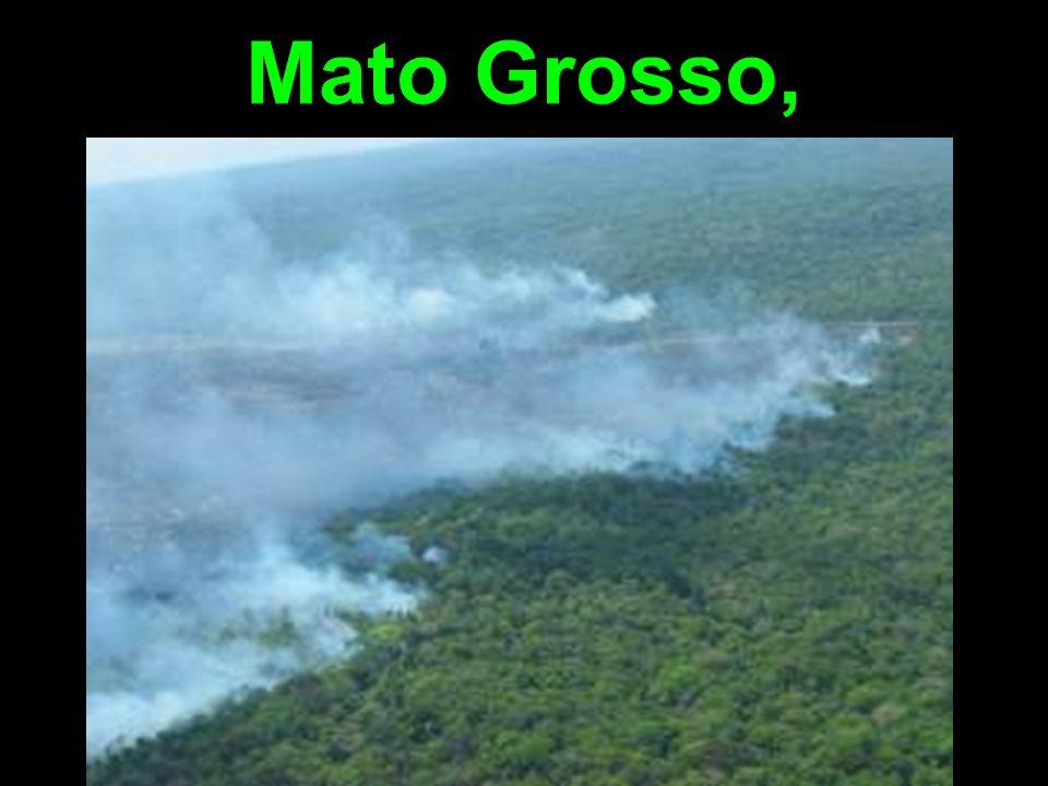 Mato Grosso,