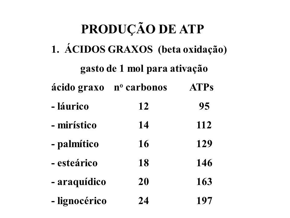 PRODUÇÃO DE ATP 1. ÁCIDOS GRAXOS (beta oxidação)