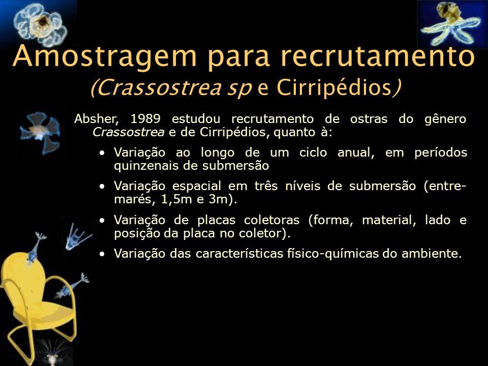 Amostragem para recrutamento (Crassostrea sp e Cirripédios)