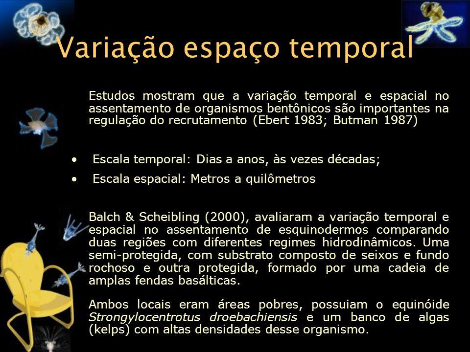Variação espaço temporal