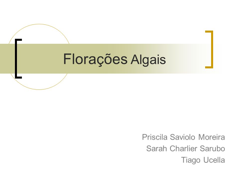 Priscila Saviolo Moreira Sarah Charlier Sarubo Tiago Ucella