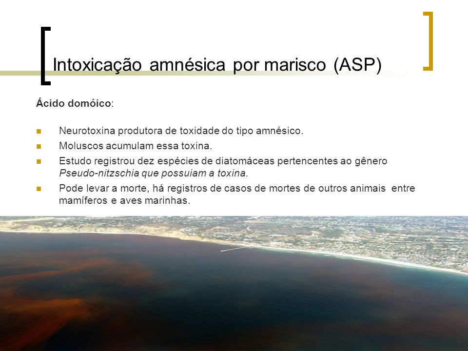 Intoxicação amnésica por marisco (ASP)
