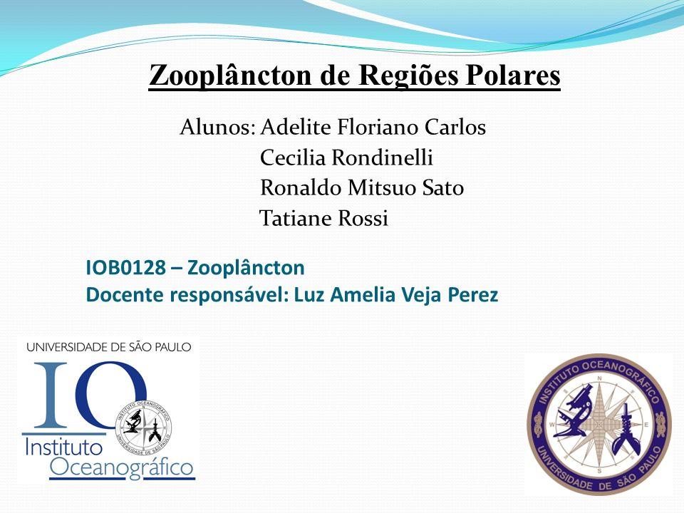 Zooplâncton de Regiões Polares