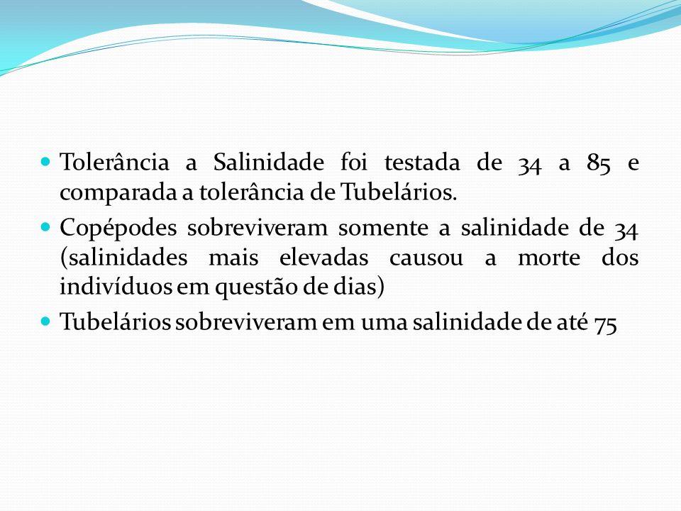 Tolerância a Salinidade foi testada de 34 a 85 e comparada a tolerância de Tubelários.