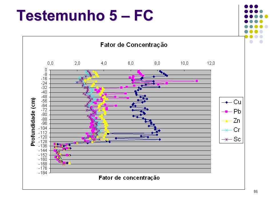 Testemunho 5 – FC