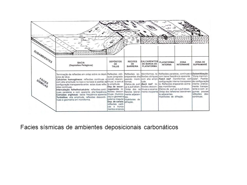 Facies sísmicas de ambientes deposicionais carbonáticos