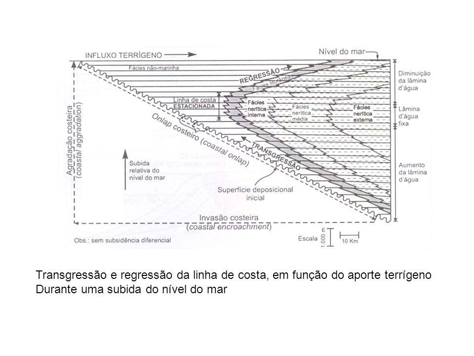 Transgressão e regressão da linha de costa, em função do aporte terrígeno