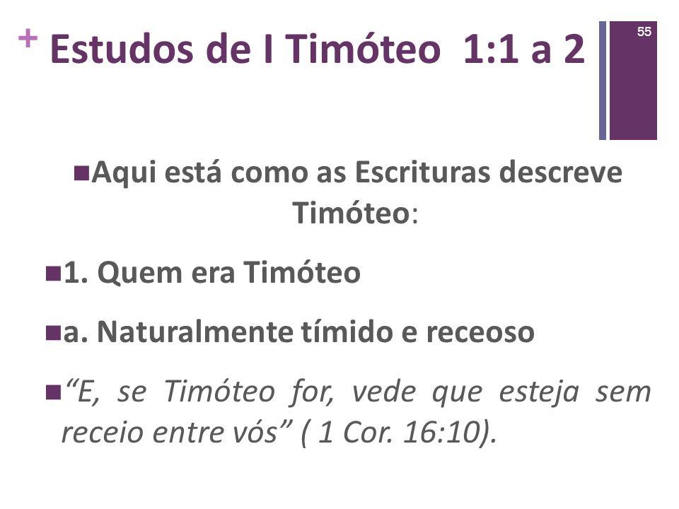 Aqui está como as Escrituras descreve Timóteo: