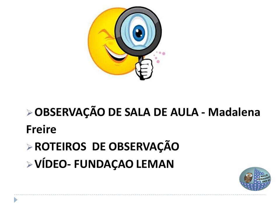 OBSERVAÇÃO DE SALA DE AULA - Madalena