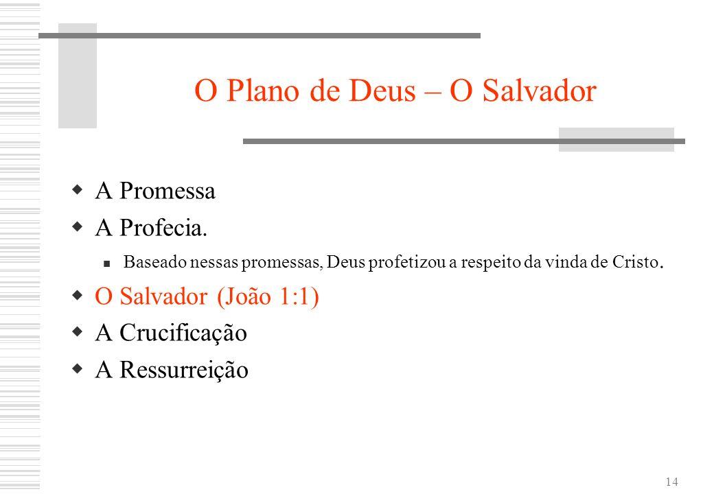 O Plano de Deus – O Salvador
