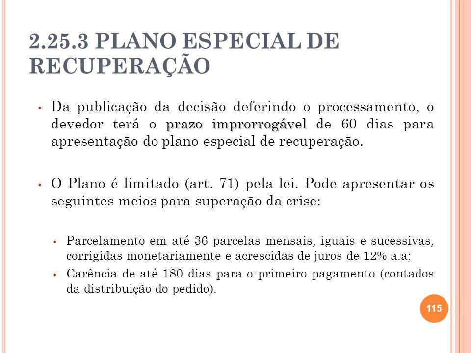2.25.3 PLANO ESPECIAL DE RECUPERAÇÃO