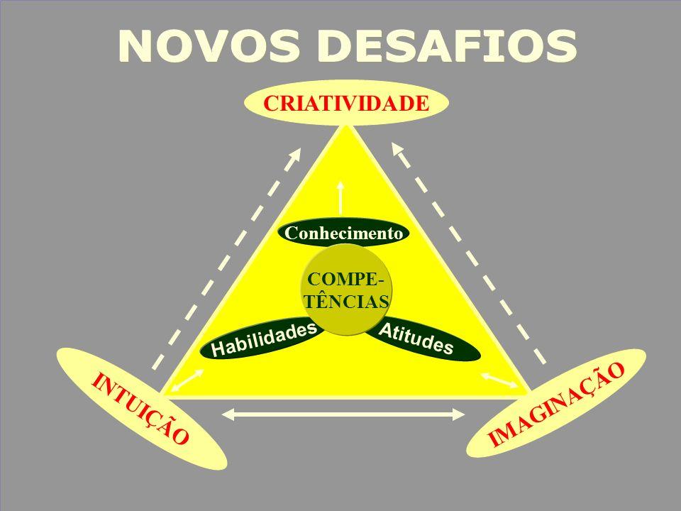 NOVOS DESAFIOS CRIATIVIDADE IMAGINAÇÃO INTUIÇÃO Conhecimento COMPE-