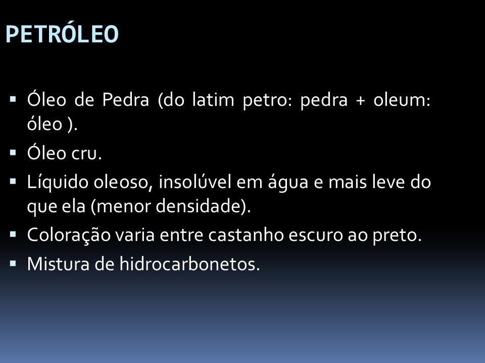 PETRÓLEO Óleo de Pedra (do latim petro: pedra + oleum: óleo ).