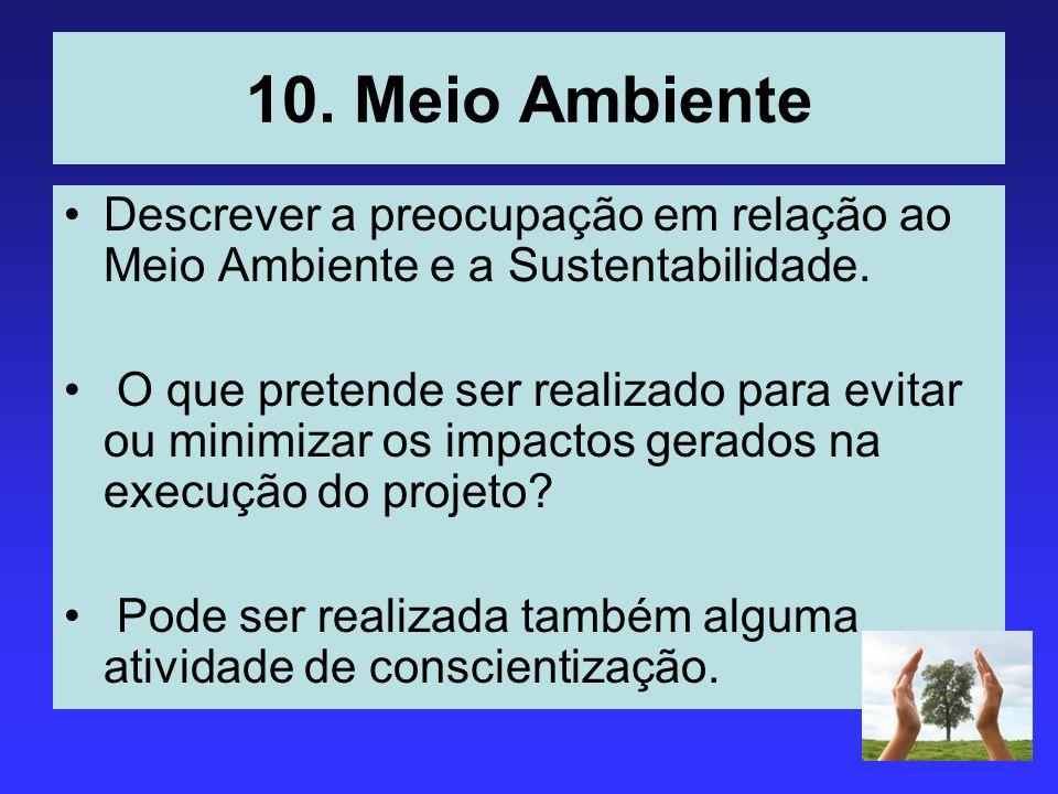 10. Meio Ambiente Descrever a preocupação em relação ao Meio Ambiente e a Sustentabilidade.