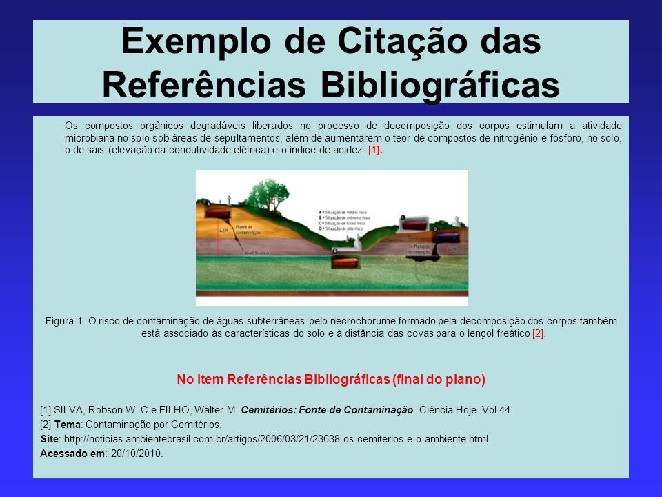 Exemplo de Citação das Referências Bibliográficas