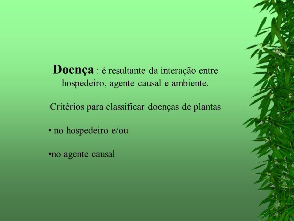 Critérios para classificar doenças de plantas
