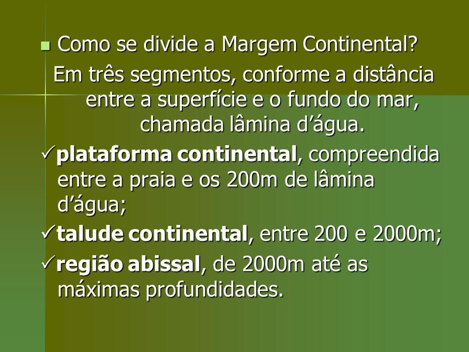 Como se divide a Margem Continental