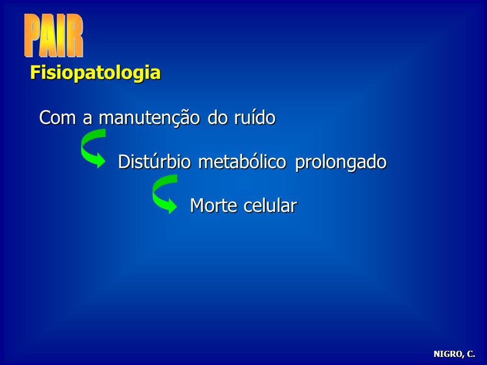 PAIR Fisiopatologia Com a manutenção do ruído