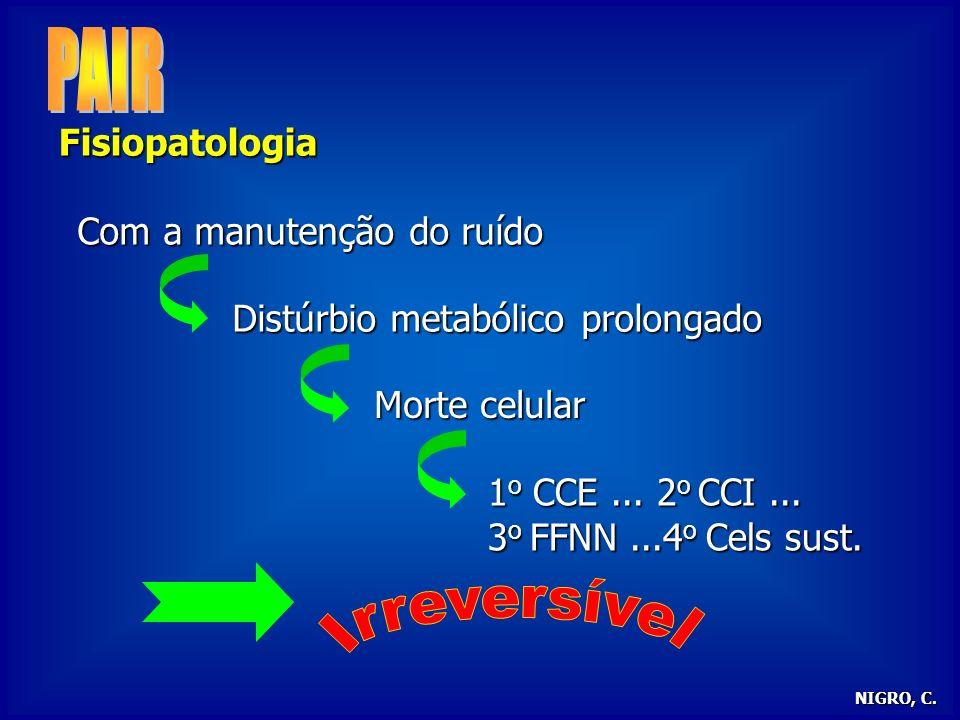 PAIR Irreversível Fisiopatologia Com a manutenção do ruído