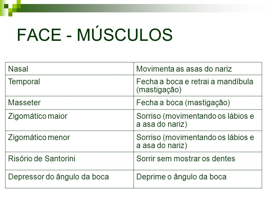 FACE - MÚSCULOS Nasal Movimenta as asas do nariz Temporal