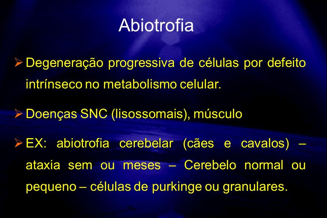 Abiotrofia Degeneração progressiva de células por defeito intrínseco no metabolismo celular. Doenças SNC (lisossomais), músculo.