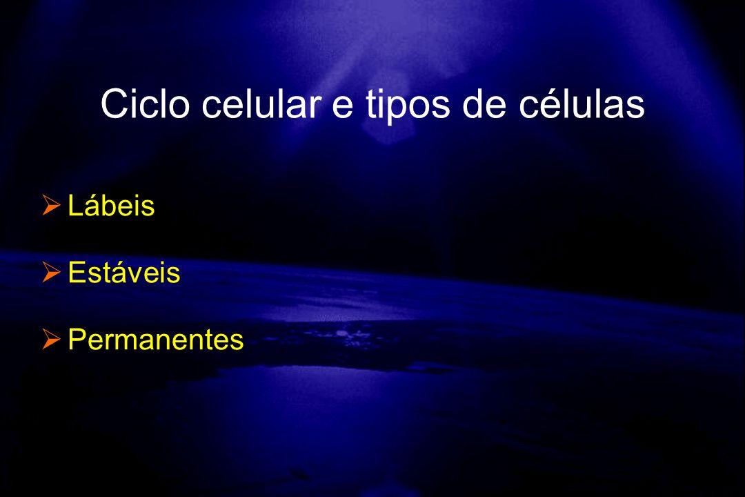 Ciclo celular e tipos de células