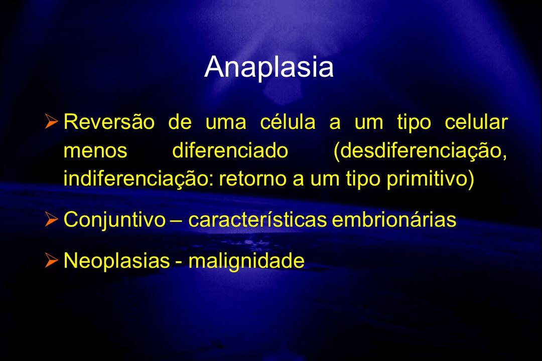 Anaplasia Reversão de uma célula a um tipo celular menos diferenciado (desdiferenciação, indiferenciação: retorno a um tipo primitivo)