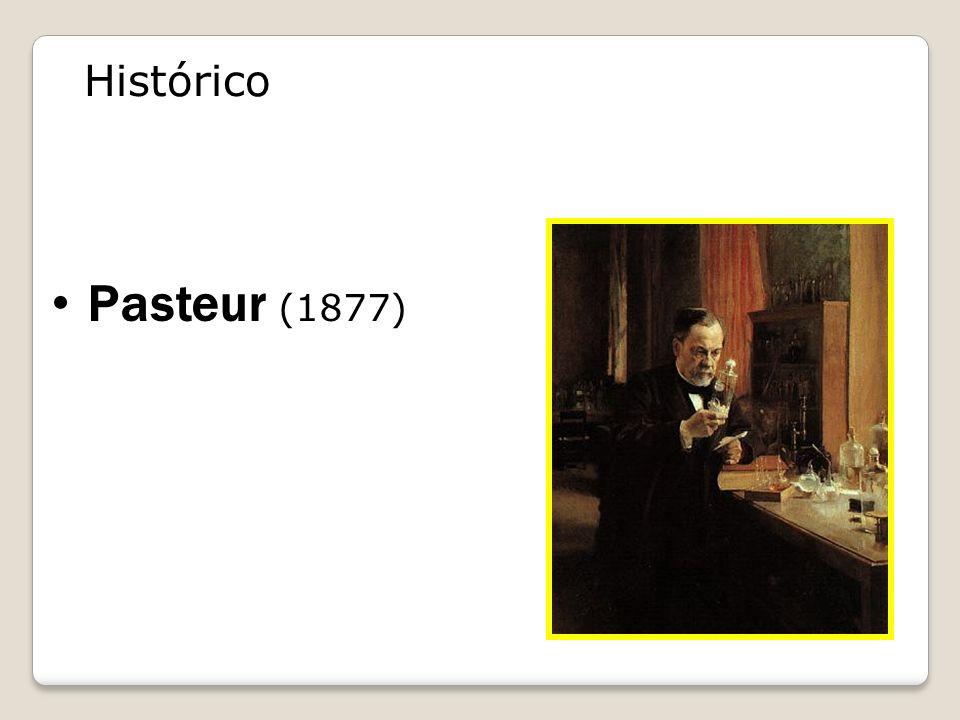 Histórico Pasteur (1877) bactéria x bactéria