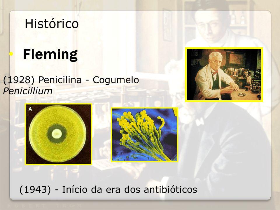Fleming Histórico (1928) Penicilina - Cogumelo Penicillium