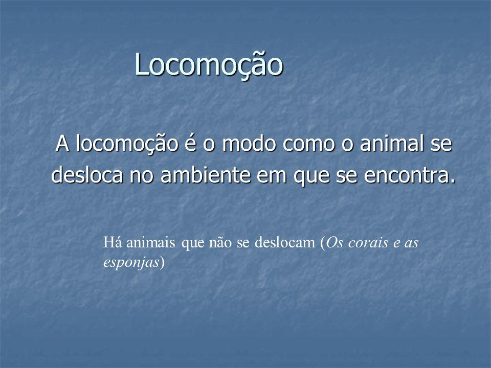 Locomoção A locomoção é o modo como o animal se