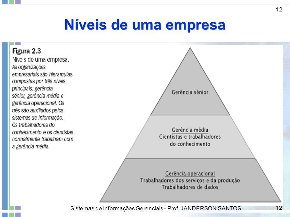 Níveis de uma empresa 12 ddd Sistemas de Informações Gerenciais - Prof. JANDERSON SANTOS