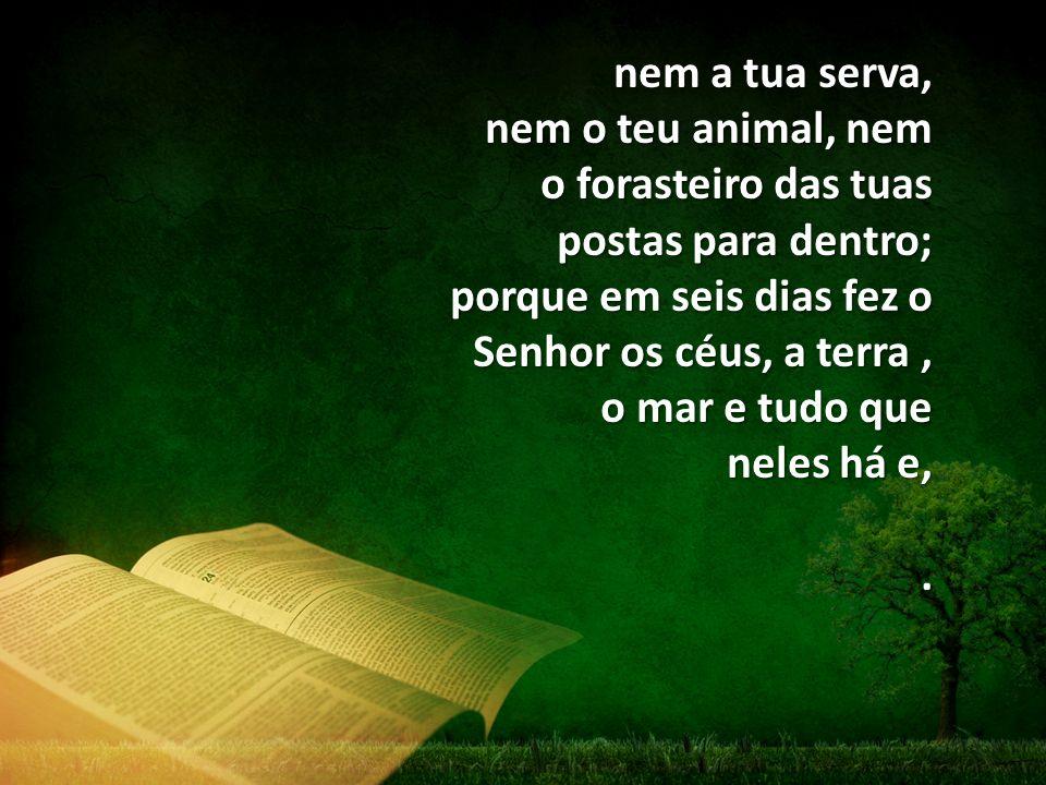 nem a tua serva, nem o teu animal, nem o forasteiro das tuas postas para dentro; porque em seis dias fez o Senhor os céus, a terra , o mar e tudo que neles há e,
