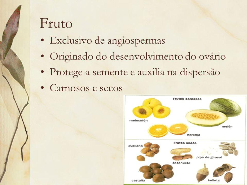 Fruto Exclusivo de angiospermas Originado do desenvolvimento do ovário