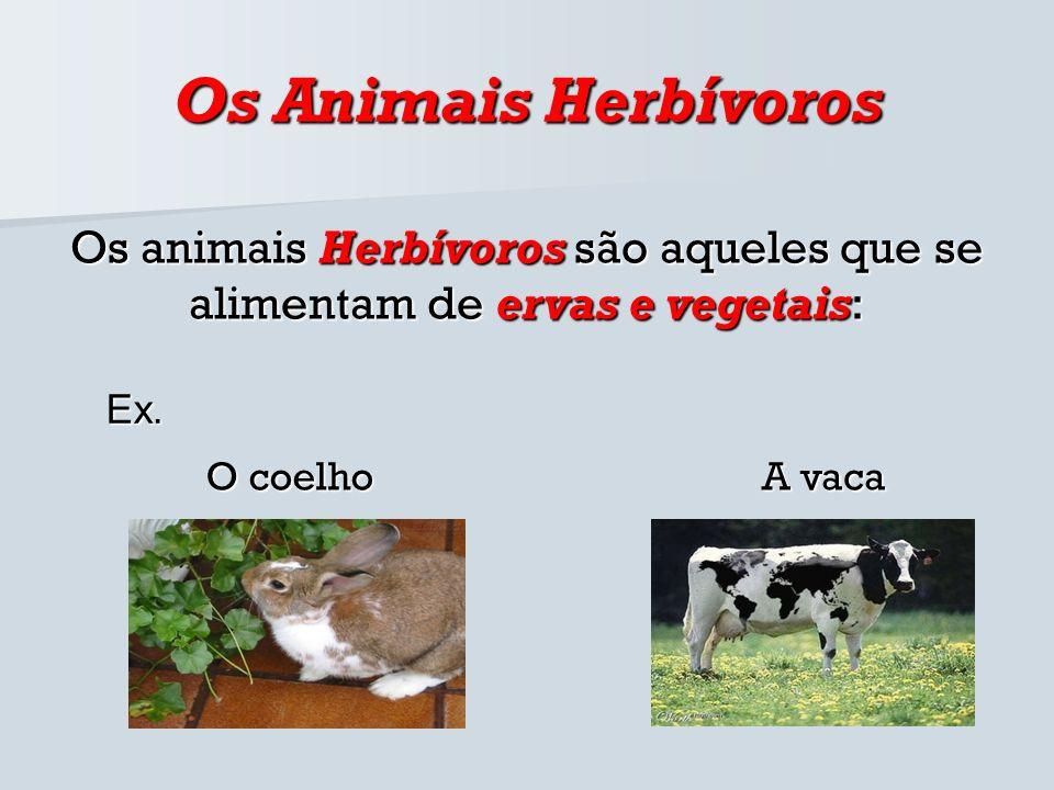 Os Animais HerbívorosOs animais Herbívoros são aqueles que se alimentam de ervas e vegetais: Ex. O coelho.