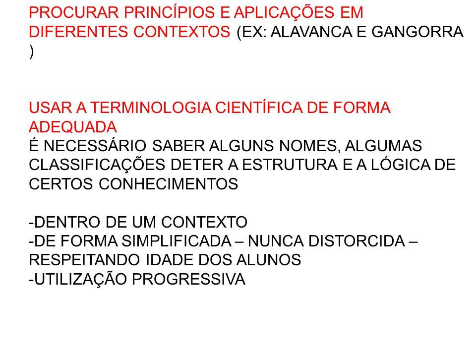 PROCURAR PRINCÍPIOS E APLICAÇÕES EM DIFERENTES CONTEXTOS (EX: ALAVANCA E GANGORRA )