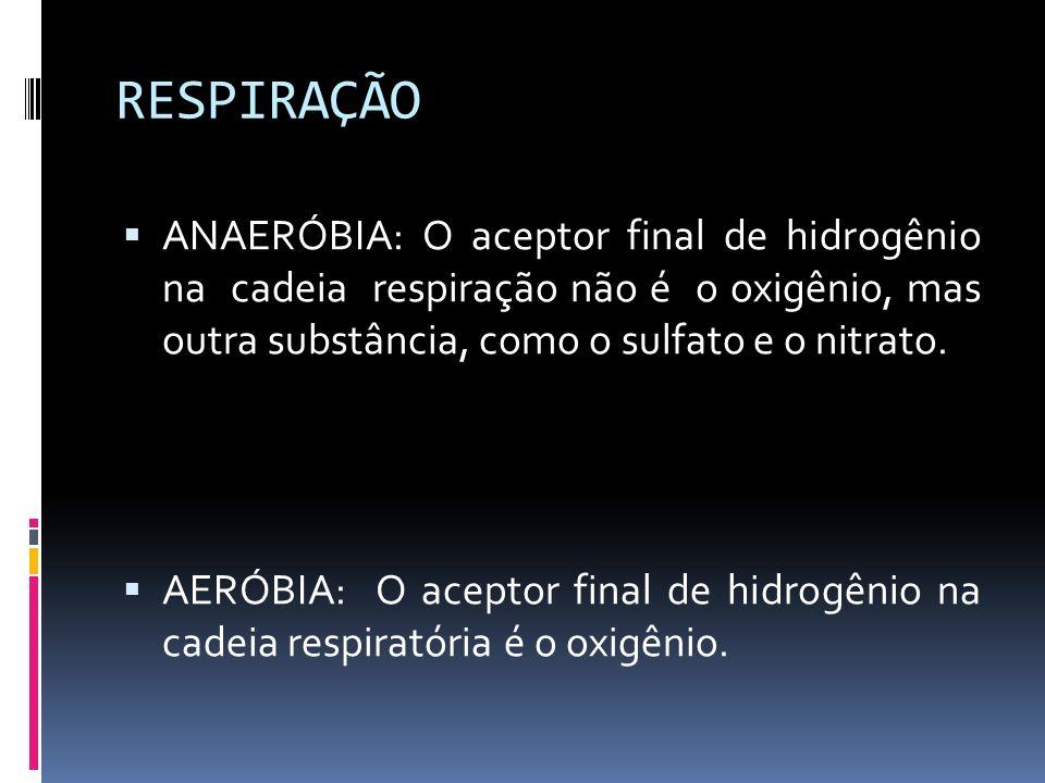 RESPIRAÇÃO ANAERÓBIA: O aceptor final de hidrogênio na cadeia respiração não é o oxigênio, mas outra substância, como o sulfato e o nitrato.