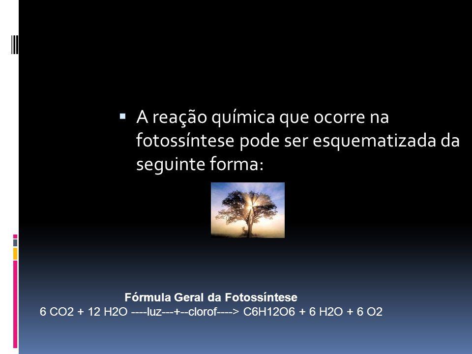 Fórmula Geral da Fotossíntese