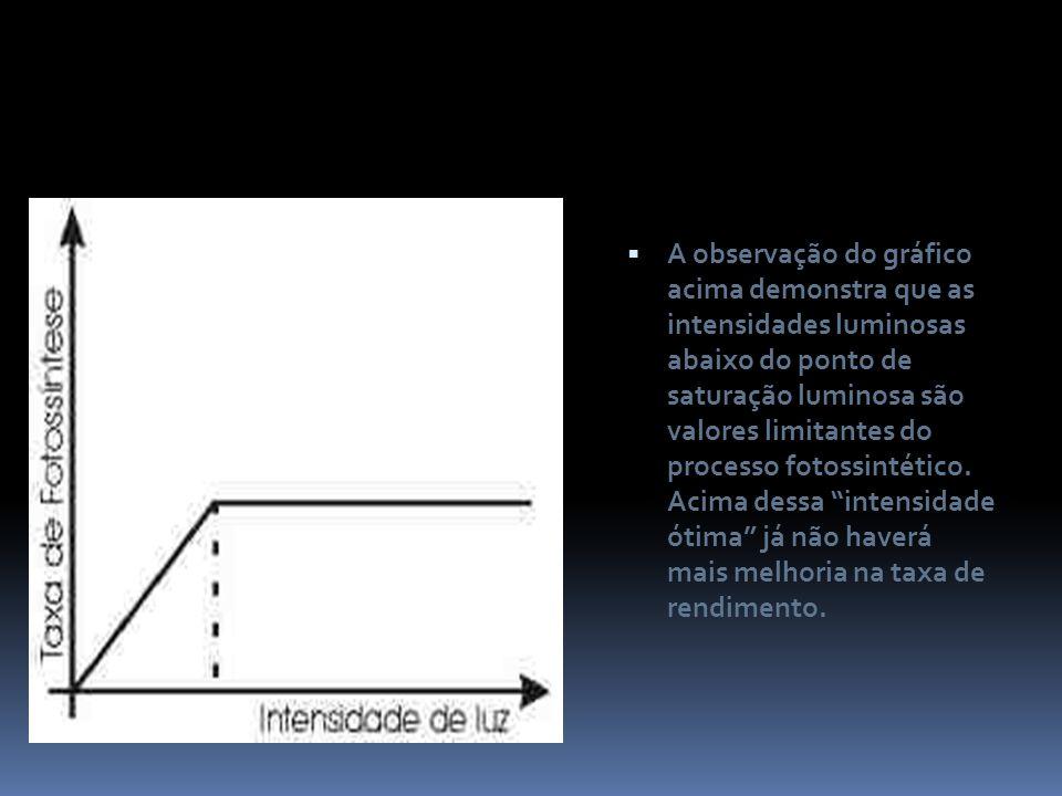 A observação do gráfico acima demonstra que as intensidades luminosas abaixo do ponto de saturação luminosa são valores limitantes do processo fotossintético.