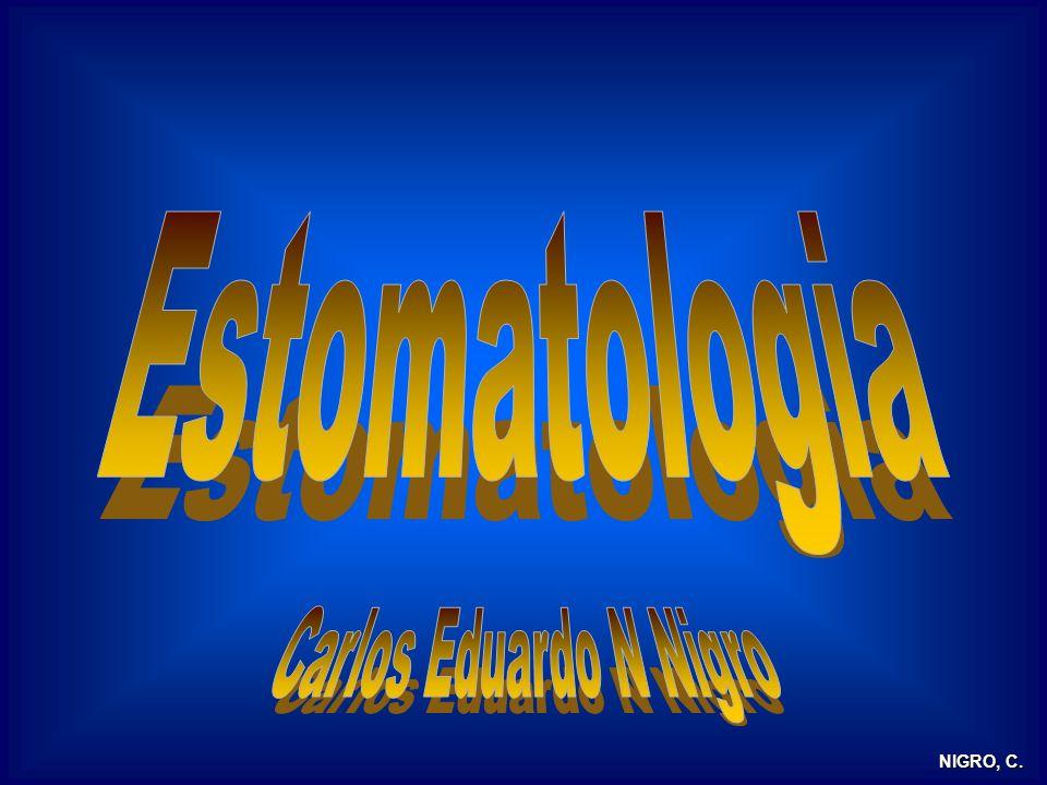 Estomatologia Carlos Eduardo N Nigro