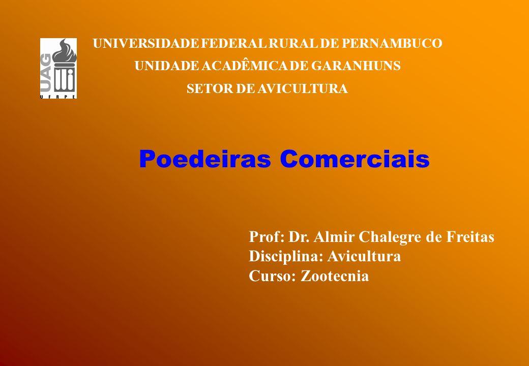 Poedeiras Comerciais Prof: Dr. Almir Chalegre de Freitas