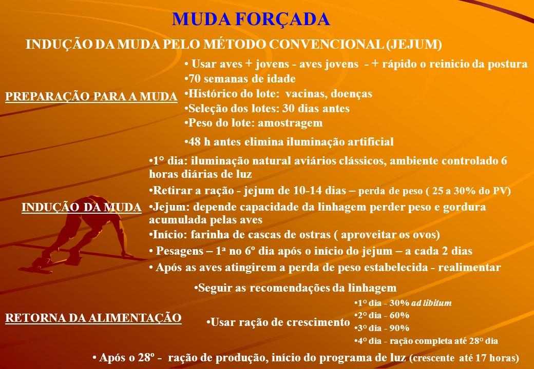 MUDA FORÇADA INDUÇÃO DA MUDA PELO MÉTODO CONVENCIONAL (JEJUM)