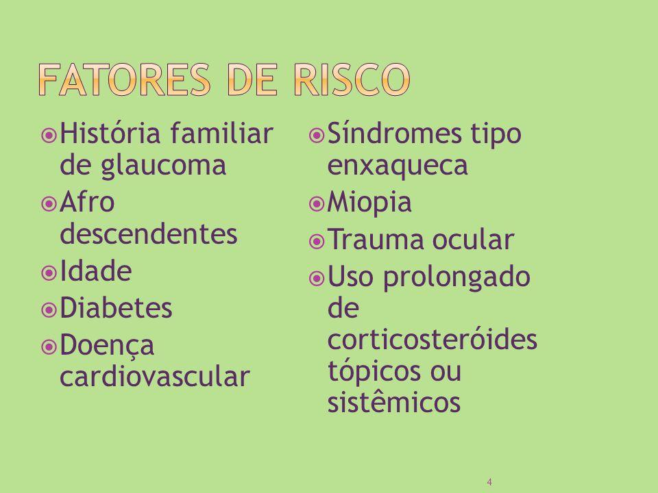 FATORES DE RISCO História familiar de glaucoma Afro descendentes Idade