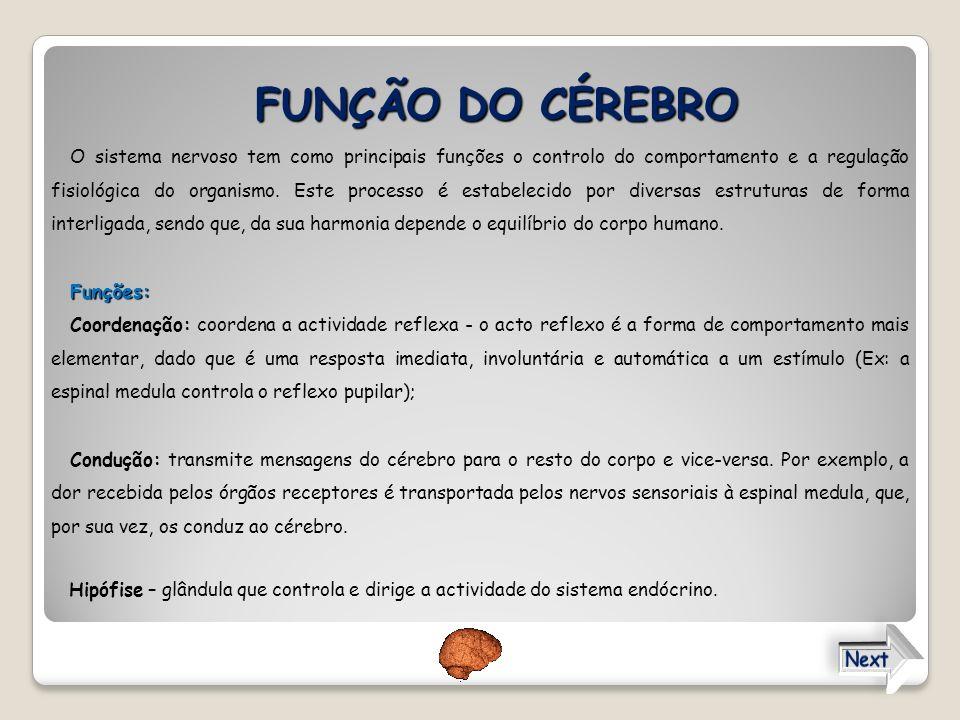 FUNÇÃO DO CÉREBRO