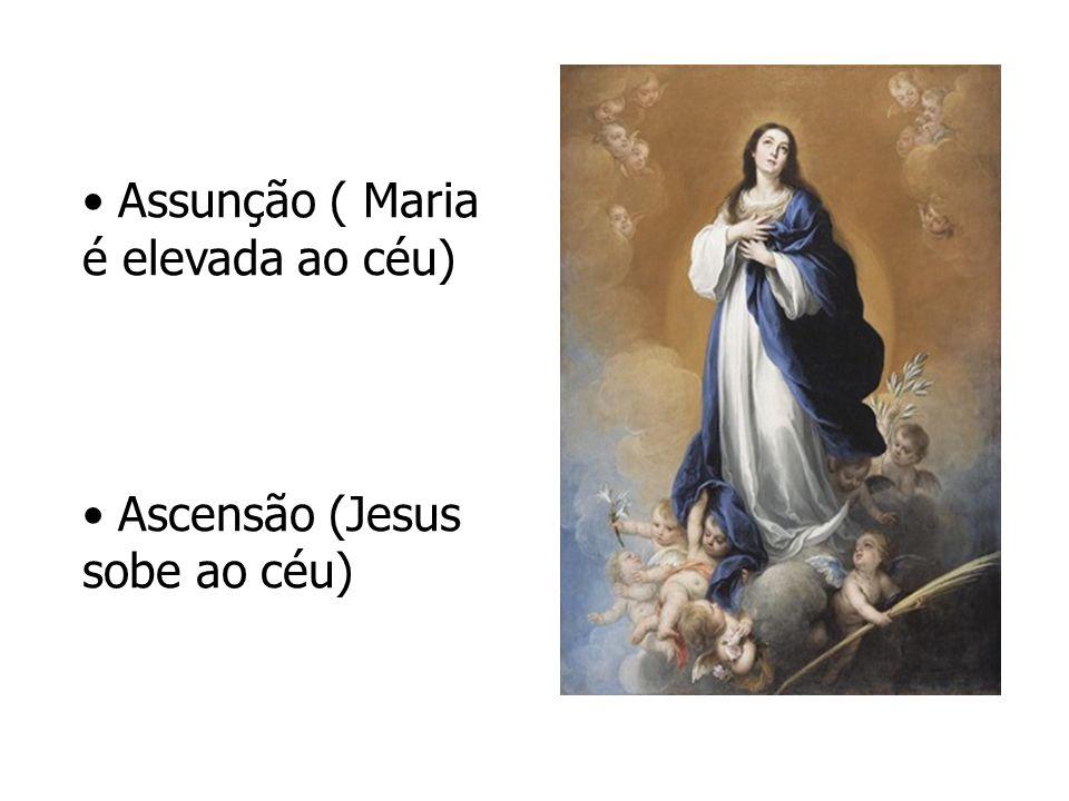 Assunção ( Maria é elevada ao céu)