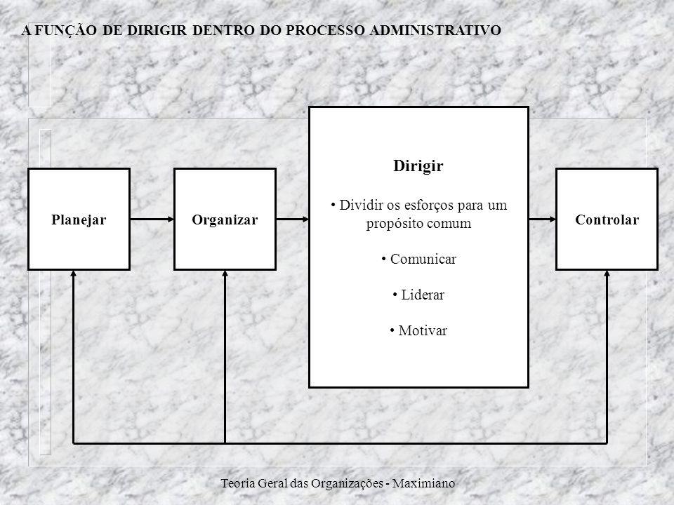A FUNÇÃO DE DIRIGIR DENTRO DO PROCESSO ADMINISTRATIVO