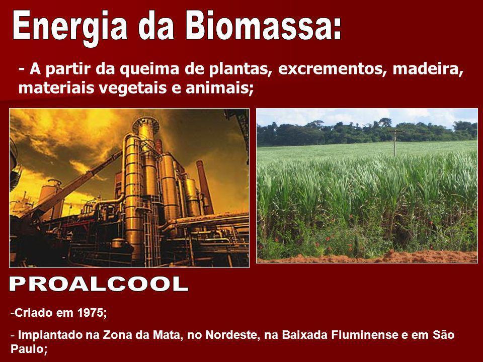 Energia da Biomassa: PROALCOOL